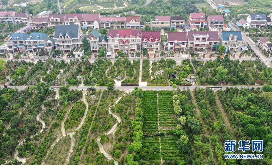 (走向我们的小康生活·图文互动)(6)水清岸美产业兴——江苏南通小康路上的绿色实践